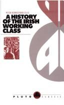 Download A history of the Irish working class