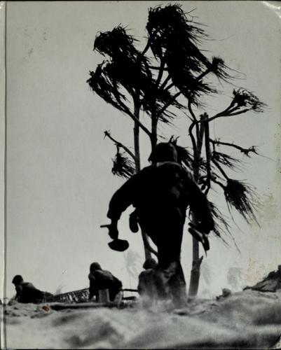 Download Island fighting