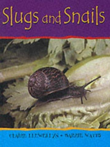 Download Slugs and Snails (Minibeasts)