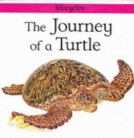 Download The Journey of a Turtle (Lifecycles)