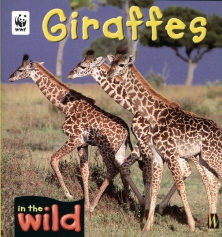 Download Giraffes (In the Wild)