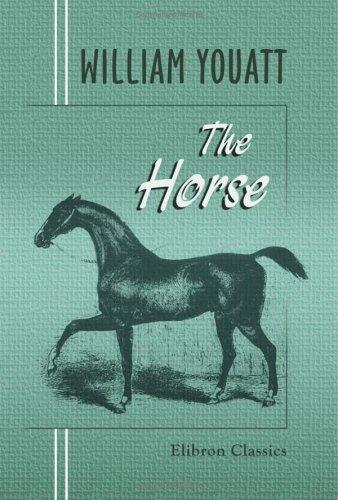 Download The Horse