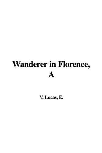 Download Wanderer in Florence