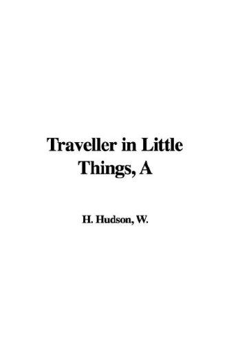 Download Traveller in Little Things