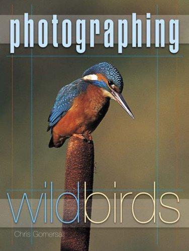 Download Photographing Wild Birds
