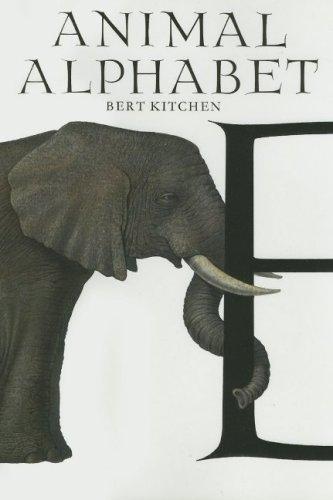 Download Animal Alphabet