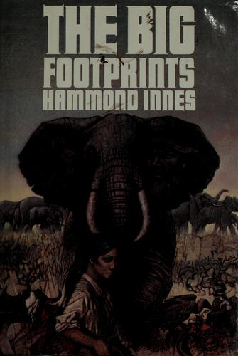 Download The big footprints