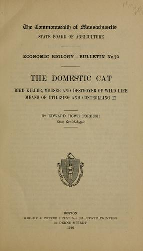 … The domestic cat