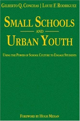 Download Small Schools and Urban Youth