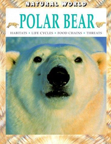 Download Polar Bear