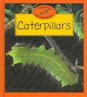 Download Caterpillars (Keeping Minibeasts)