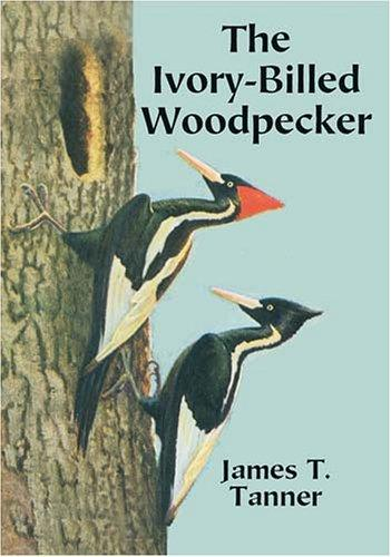 Download The Ivory-Billed Woodpecker