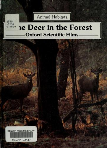 The deer in the forest by Linda Gamlin