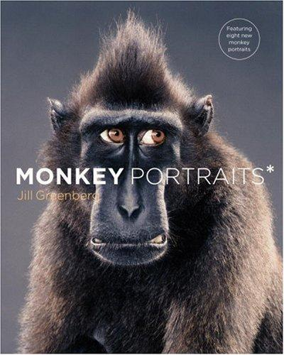 Monkey Portraits
