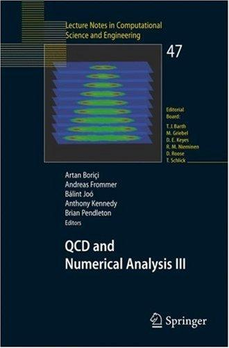 QCD and numerical analysis III by